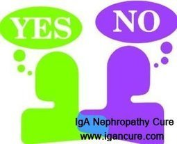 IgA Nephropathy: Can Kidney Function Be Restored After A 50% Reduction in Function_IGA Cure   igancure.com   Scoop.it