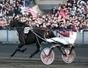 Notre avis sur les 18 partants du Grand Prix d'Amérique 2013 - Trot | Courses Hippiques | Scoop.it