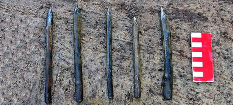 Mesolithic sanctuary reveals constellation riddle | microburin mesolithic archaeology | Scoop.it