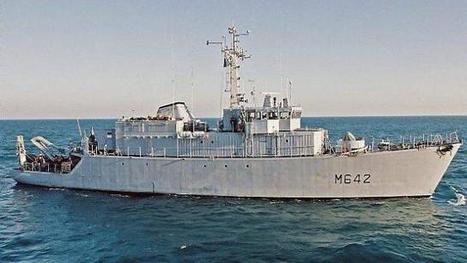 Des pétardements sous-marins, mardi   Ces animaux sauvages ou domestiques maltraités par l'homme   Scoop.it