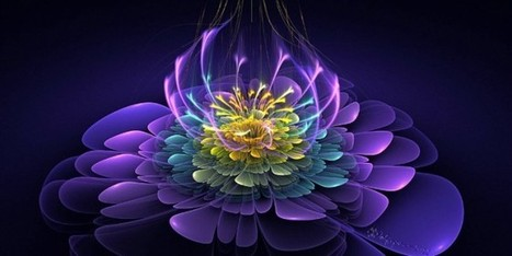 Emotional Healing from Flower Essence through Sound   Healing and Balance   Scoop.it