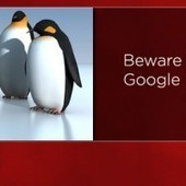 Do You Need SEO? Or, Surviving The Google Zoo | Dot Comers | Scoop.it