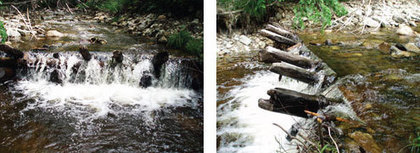 If You Remove It They Will Come – Restoring Amethyst Brook, MA - American Rivers (blog) | Fish Habitat | Scoop.it