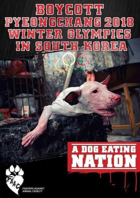 Boycott PyeongChange 2018 Ad published on The St. Augustine Record | Nature Animals humankind | Scoop.it