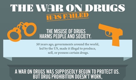 INFOGRAPHIC: The Case for Drug Law Reform @TransformDrugs   Drugs, Society, Human Rights & Justice   Scoop.it