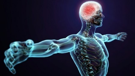 """""""Virtual reality hands"""" mind-control therapy for stroke patients - Gizmag 