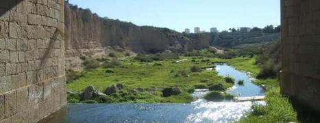 El Consell rechaza financiar la obra para aprovechar el agua que tira la depuradora   Más que agua   Scoop.it