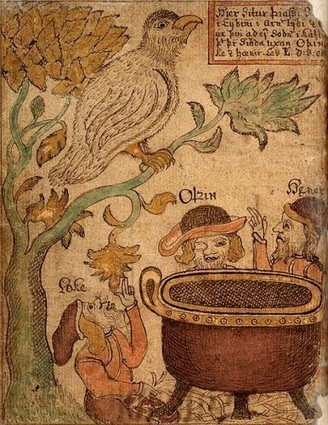 The Plants used in a Viking Age Garden A.D. 800-1050 - Medievalists.net | Ancient History and Archaeology | Scoop.it