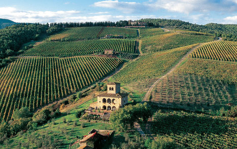 The Wines of Tuscany | Italian Goods sourcing & distribution | Scoop.it