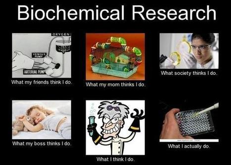 Biochemical Research | What I really do | Scoop.it