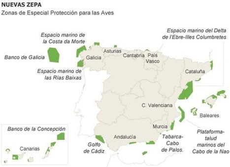 La superficie protegida para las aves marinas se multiplica por 20 en España | Geografia de España | Scoop.it