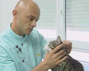 ONISEP - Je veux m'occuper d'animaux   Métiers avec les animaux et la nature   Scoop.it