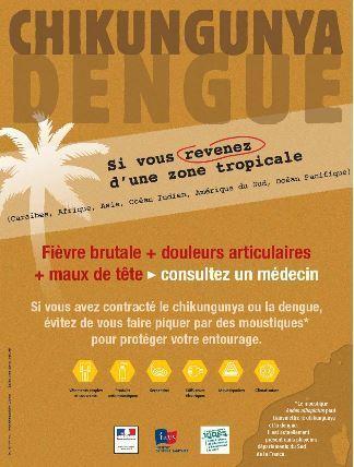 Dengue, Chikungunya : des risques pour l'Outremer | EntomoNews | Scoop.it