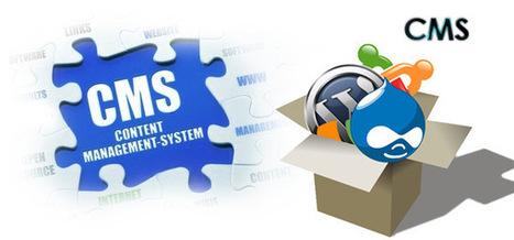 Content Management System CMS Development Pune CMS Solutions   CMS Development   Scoop.it