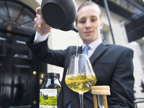 Diners shun wine for a nice cuppa | Wine in the World | Scoop.it
