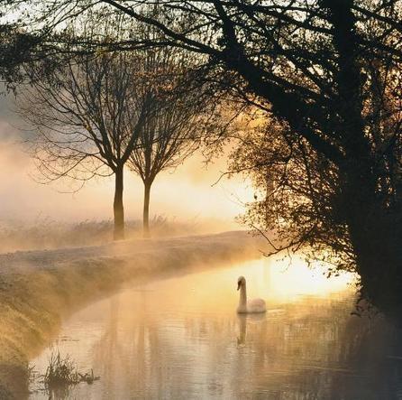 Al mattino, d'inverno, sulla strada Comun   montorioveronese   Scoop.it