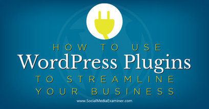 How to Use WordPress Plugins to Streamline Your Business | Digital Marketing | Scoop.it
