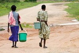 Water scarcity 'biggest concern' of climate change   Sustainable Agriculture   Scoop.it