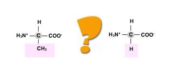 SOBRE PROTEINAS   Temas de biología   Scoop.it