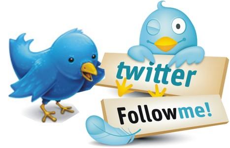 17 Tactics to Get More Twitter Followers | Web Brain Infotech | Scoop.it