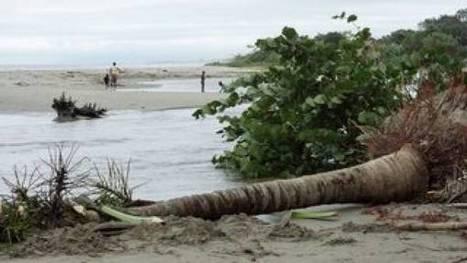 El Magdalena y la Guajira elaboran  proyecto para atender erosión costera   Caribe Colombiano   Scoop.it