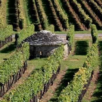 10 bonnes raisons de se mettre à l'oenotourisme - L'Internaute Week-end | HTR : Hôtellerie Tourisme Restauration | Scoop.it | Le tourisme viticole | Scoop.it