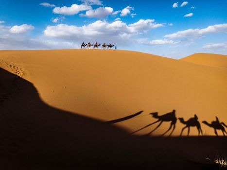 Morocco - Xmas & New Year Tours   Morocco Tours & New Years Desert Tours - Morocco Travel & Safaris - Morocco Luxury Tours - Private Camp, Marrakech, Essaouira, Ourazazate, Kasbah, Morocco Excursio...   Morocco Travel with Local   www.glampingmorocco.com   Scoop.it