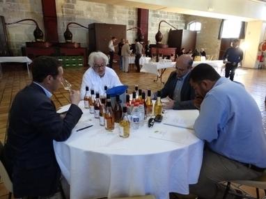 31 mai : Résultats du concours des Pineaux et eaux-de-vie de Cognac   Le Cognac et son vignoble   Scoop.it