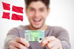 Make Your Denmark Dreams Come True With Danish Green Card | Immigration and Visa Latest News | Scoop.it