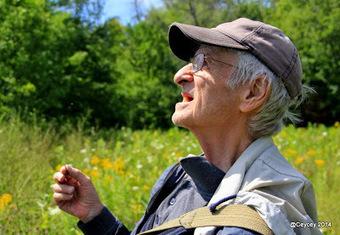 Raymond Hutchinson : Pourquoi l'étude des libellules me passionne autant | Les colocs du jardin | Scoop.it