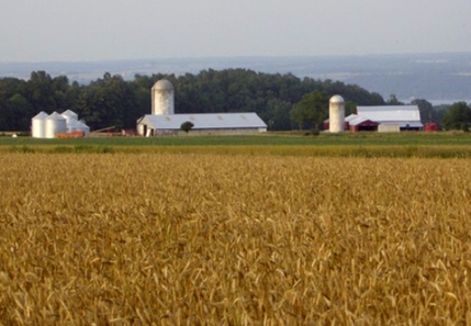 Family Farmers Ask FDA for More Time to Analyze New Food Safety Rules | EcoWatch | Scoop.it