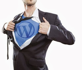 Las Vegas Online Marketing: WordPress King Can Fix Your Site | las vegas professionals | Scoop.it