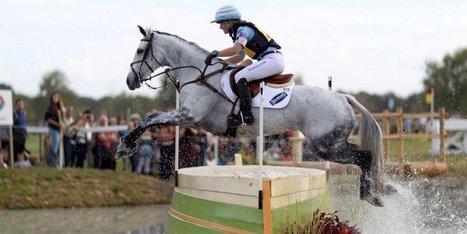 Pau innove avec deux concours 4 étoiles simultanés   Cheval et sport   Scoop.it