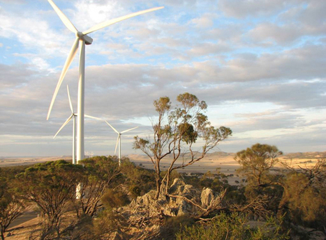 Australia drops Carbon tax in favor of paying industries to use Clean Energy   Technology in Business Today   Scoop.it