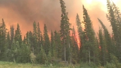 Climate change fuelling forest fires, says U of S expert | Climate change challenges | Scoop.it
