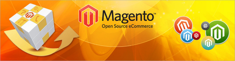 Magento Customization For Your E-Commerce Website | Business | Scoop.it