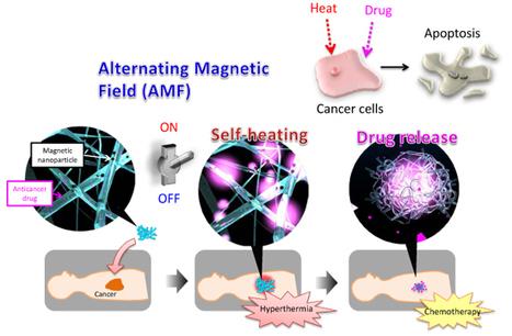 La nanotoile qui piège le cancer | Civilisation 2.0 | Scoop.it