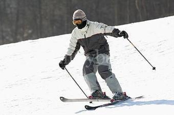 네이버 지식백과 | skii | Scoop.it