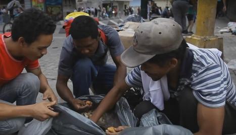 Venezuelan life: Eating garbage. Waiting in lines. Sharing 1 egg a day   Glopol Dev   Scoop.it