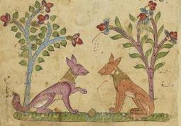 Deux chacals à la cour ou le récit de Kalîla et Dimna (Christine van Ruymbeke) | ALIA - Atelier littéraire audiovisuel | Scoop.it