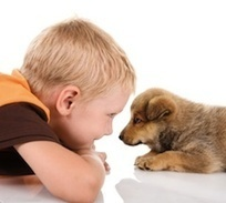 10 Ways to Teach Young Children to Be Nice to Pets | Animals R Us | Scoop.it