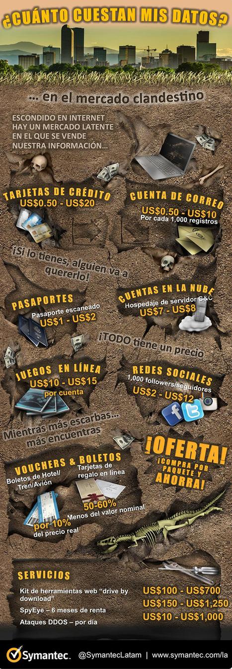Infografía: Valor de los datos en el mercado clandestino | Informática Forense | Scoop.it