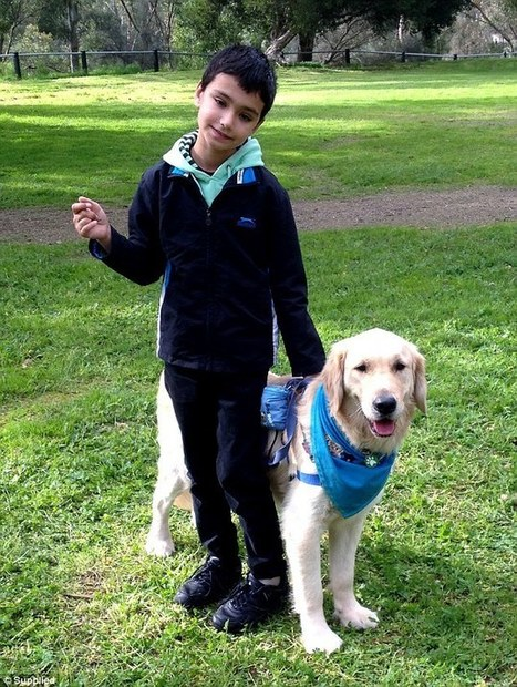 Assistance dogs change the lives of children on the autism spectrum - Daily Mail | Autism and Spectrum Disorders | Scoop.it