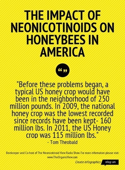 Neonicotinoids: What Will You Do The Day The Buzzing Stops? | Elevator Pitch: Education for Sustainability | Scoop.it