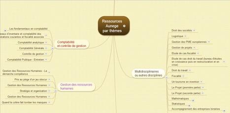 La carte mentale un outil de présentation: les ressources AUNEGE | Outils numériques pour associations | Scoop.it