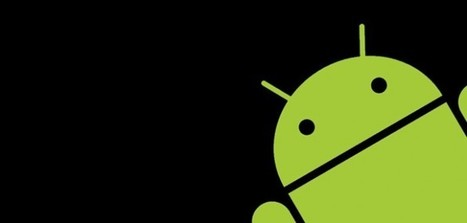 Found a bug in Android? Google will pay you up to $40,000 to tell it | Baby Boomers Entrepreneurs | Scoop.it