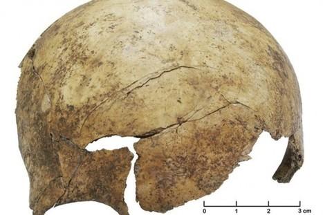 Un charnier révèle l'existence de massacres dans la préhistoire européenne | Frank Jordans | Découvertes | diversité | Scoop.it