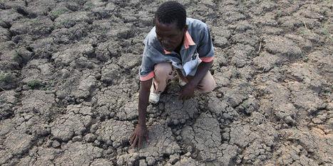 Un demi-milliard de personnes dans le monde manquent cruellement d'eau | Histoire culturelle - Culture, espaces, environnement | Scoop.it