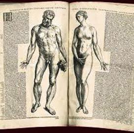 "Carl Jung on ""Human Body"" – Anthology | Carl Jung Depth Psychology | Scoop.it"