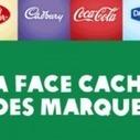 La Face Cachée des Marques. Merci Oxfam ! | Evaluation d'impact environnemental | Scoop.it